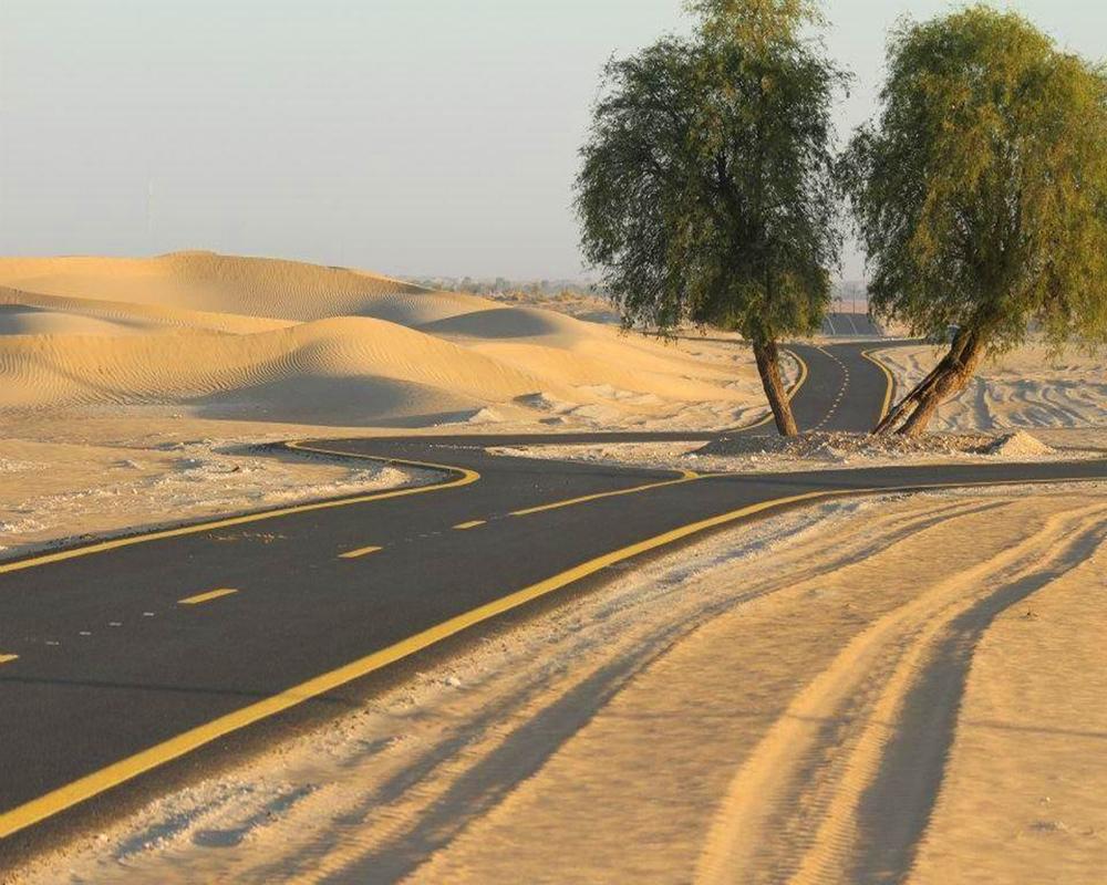Rennvelofahren in Arabien: Vortrag am 21. November
